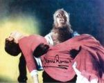 YVONNE ROMAIN Hammer The Curse of the Werewolf #2